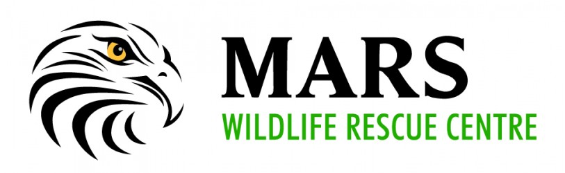 Image result for MARS rescue centre logo