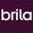 Brila Youth Projects